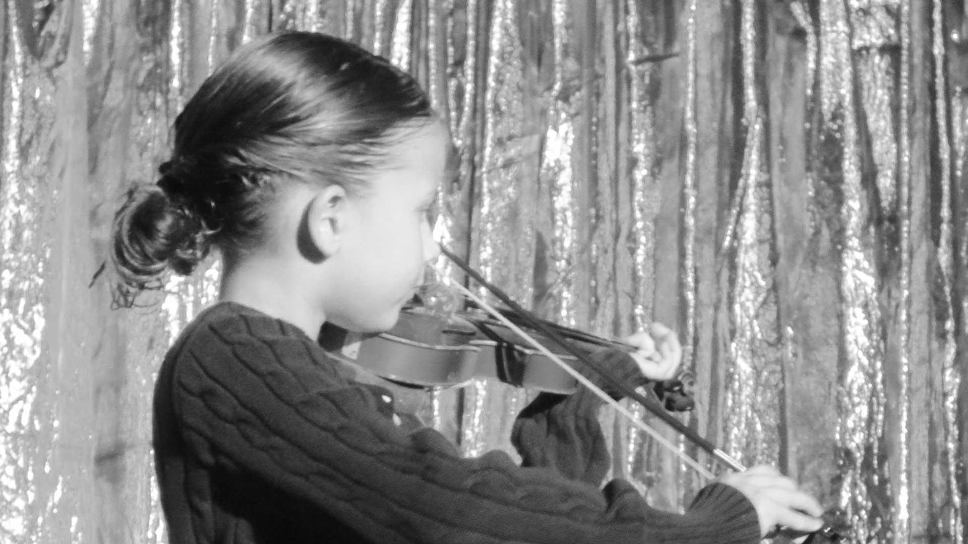 violinbanner